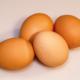 El manejo sanitario del huevo incubable